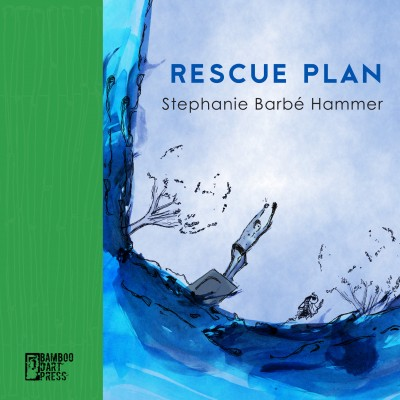 Rescue Plan book cover has boy jumping off a diving board into water